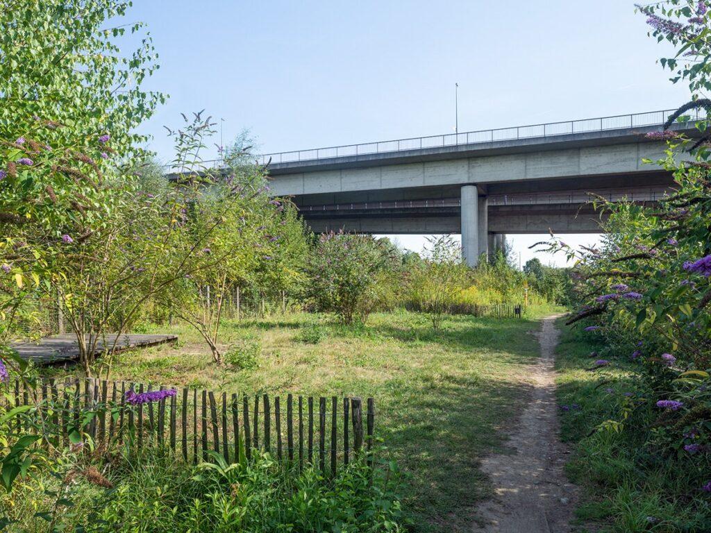Blick Richtung Brücke mit Trampelpfad und Staketenzaun und einer Holzplattform links im Bild.